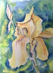 "Yellow Iris  9"" x 12"", Watercolor, 2013"